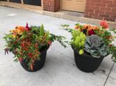 Fall Outdoor Planter