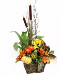 Fall Assortment Basket Plant