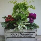 FALL PLANTER BOX planter