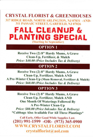 FALL PLANTING SPECIAL MUMS