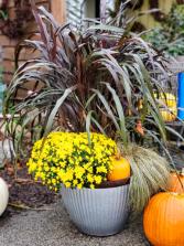Fall Porch Pot with Pumpkin