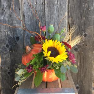 Fall Pumpkin Arrangement in Spruce Grove, AB   TARAH'S GROWER DIRECT