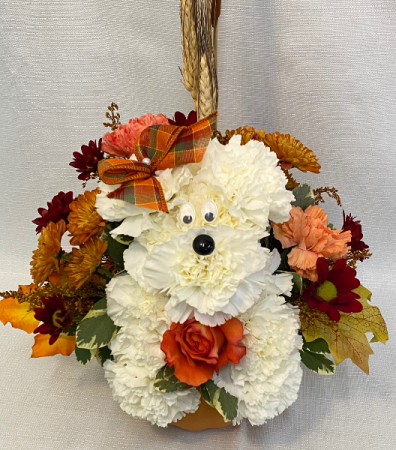 Fall Puppy Thanksgiving Special