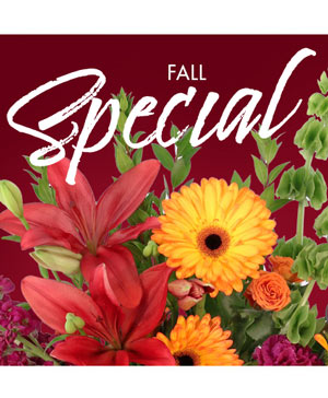 Fall Special Designer's Choice in Ripley, TN | MONT'S FLOWER SHOP LLC