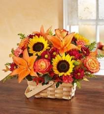 Fall Splendor fresh flowers