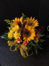 Fall Sunflowers Fall