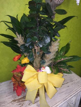 Fall Tri-Basket of Plants