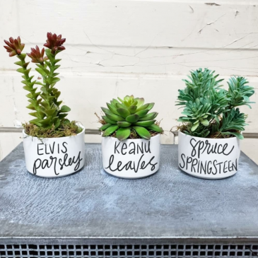 """Famous Plants"" Artificial Plant Trio"