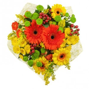Fancy and Bright Gerbera Daisy 40.00  50.00  60.00