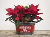 Farm Fesh Decorative Planter