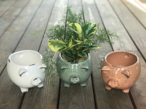 Farmhouse Pig Planter   in Libby, MT | LIBBY FLORAL & GIFT
