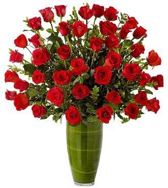 FASCINATING ROSE 36 RED ROSES ARRANGEMENT