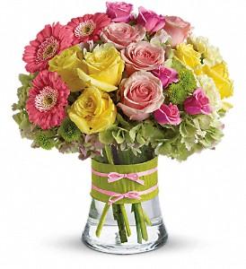 Fashionista Blooms Spring/Summer