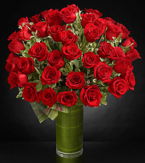 Fate Luxury Rose Bouquet - 48 Stems Of Red Roses