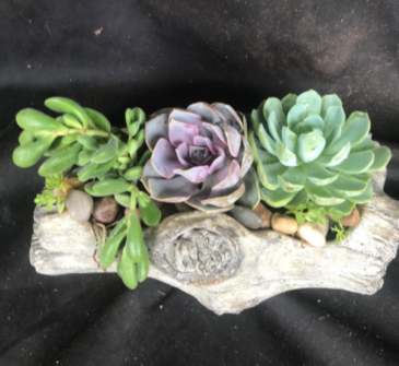 Faux Log Succulent Planter