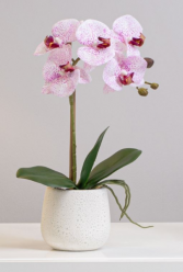 Faux Single Stem Potted Pink Orchid Silk Flowers