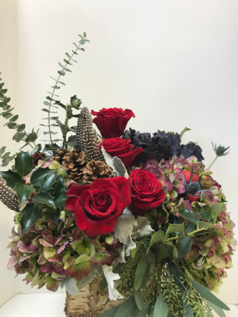Feathering Birch birch box