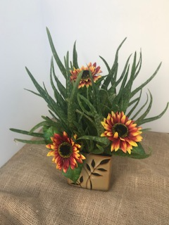 Love Heals Houseplant