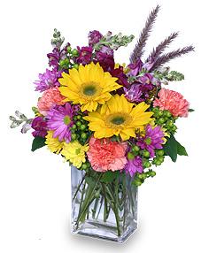 Festival of Colors Vased Arrangement