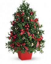 Festive Boxwood Tree
