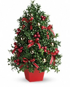 Festive Boxwood Tree