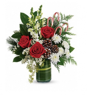 Festive Pines Bouquet  Christmas