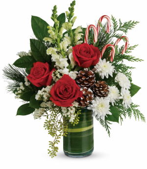 Festive Pines Bouquet HWR144A in Henniker, NH | HOLLYHOCK FLOWERS