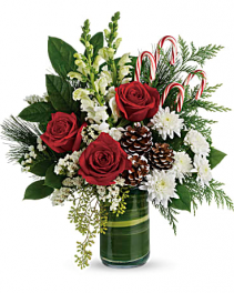Festive Pines Vase arrangement