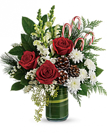 Festive Pines Vase arrangement
