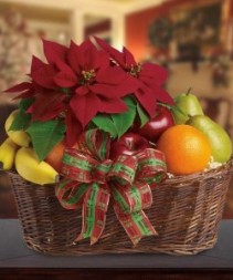 Festive Poinsettia Fruit Basket Beautiful Fruit and Floral Gift
