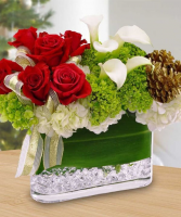 Festive Splendor Arrangement