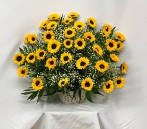 FFY234  in Waukegan, IL | Flowers For You