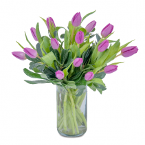 Field of Tulips Arrangement