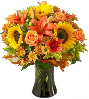 FIELDS OF EUROPE  AUTUMN ARRANGEMENT in Garrett Park, MD | ROCKVILLE FLORIST & GIFT BASKETS
