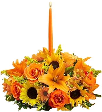FIELDS OF EUROPE  FLOWERS  CENTERPIECE