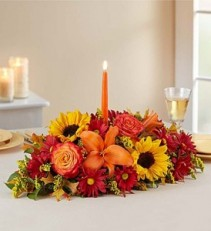 Fields of Europe™ for Fall Centerpiece Deal Of the week