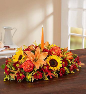 Fields of Europe for Fall Centerpiece EF74 in Brooklyn, NY | ELEGANT FLORIST