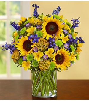 Fields of Europe™ for Summer Deluxe Arrangement in Croton On Hudson, NY | Cooke's Little Shoppe Of Flowers