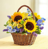 Fields of Europe™ Summer Basket Arrangement