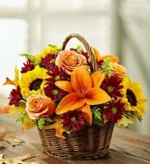 Fields of Fall Basket Arrangement by Enchanted Florist