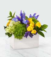 Fields of Iris White washed wooden container
