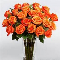 Fiery Passion 2 Dozen Fiery Orange Roses