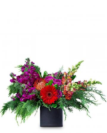 Fiesta Arrangement