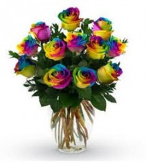 Fiesta Rainbow ONLY AVAILABLE FOR VALENTINES DAY