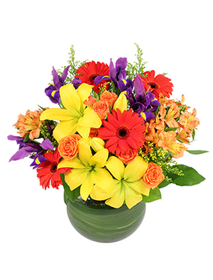 Fiesta Time! Bouquet in Chicopee, MA | GOLDEN BLOSSOM FLOWERS & GIFTS