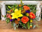 Vibrant Colors of Autumn  PFD-501