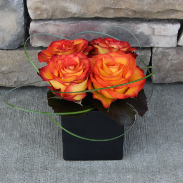 Fiery Love Squared Contemporary Rose Arrangement