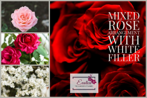 First Kiss  Mixed seasonal roses in Houston, TX | EXOTICA THE SIGNATURE OF FLOWERS
