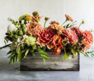 Flavorful Fall Orange dahlias, zanies, green button mums in a wood cube or glass cube upon availabilty  in Monument, CO | ENCHANTED FLORIST