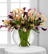 Flawless Luxury Calla Lily Bouquet Lavish Luxury Collection